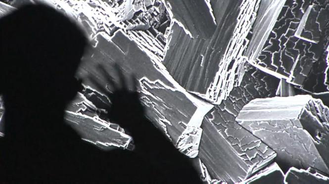 Society of NanoBioSensing: Virtual Microscope