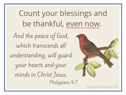 Counting blessings and being thankful