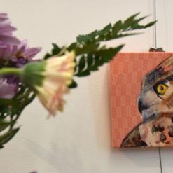 Great horned owl on orange fabric.jpg