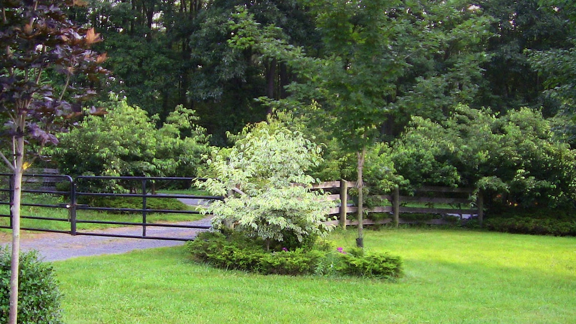 Gated entrance to Orchard Equine Retirement, setting the bar for horse retirement farms for over thi