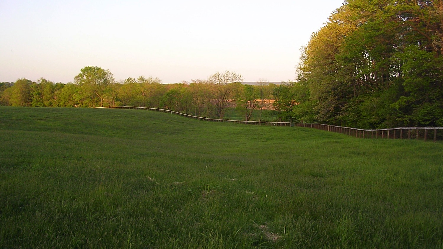 Upper pasture fenced in Keepsafe Diamond Mesh Fence