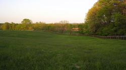 Upper pasture fenced in Keepsafe Diamond Mesh Fence