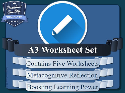 Metacognition Student Reflection Worksheets (A3) [x5]