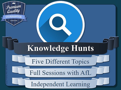 Metacognition Knowledge Hunt Sessions (x5)