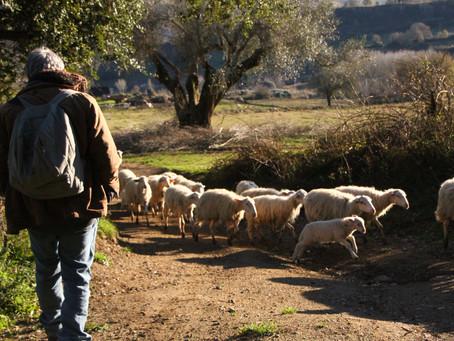 A little adventure in Calabria