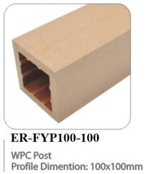 ER-FYP100-100.jpg