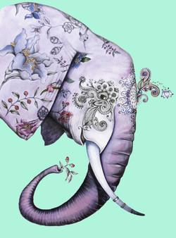 elefante s
