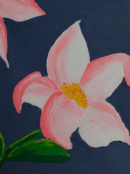 Pink Flower, Mikayla Wright