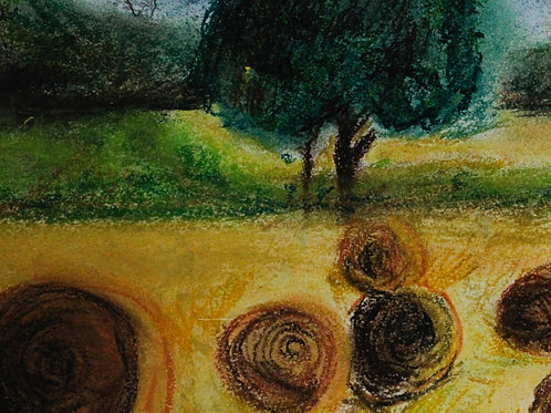 Harvest, Isaac Sarmina