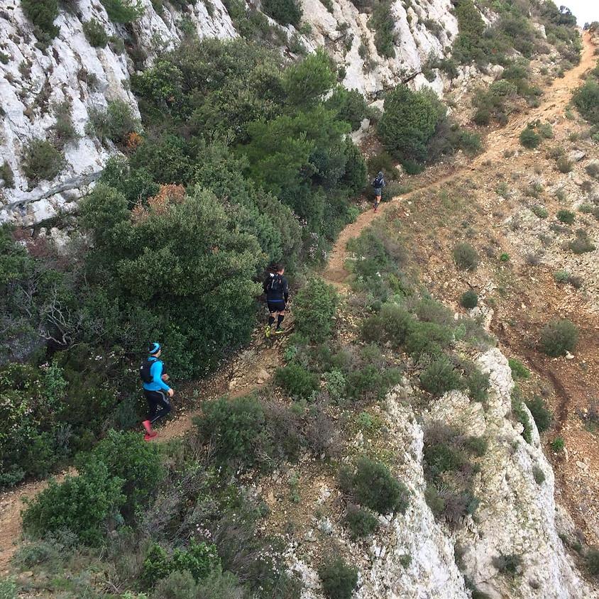 Sortie nature organisée par les coachs trail