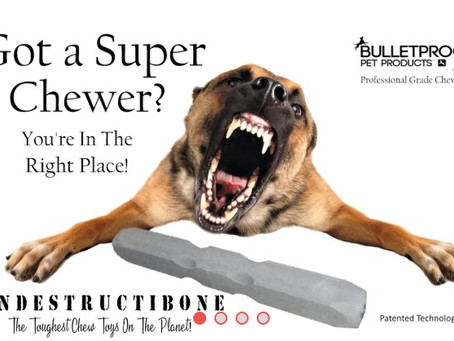 Review: Indestructibone by Bulletproof Pet Products