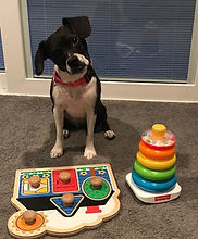 sophie and her toys.jpg