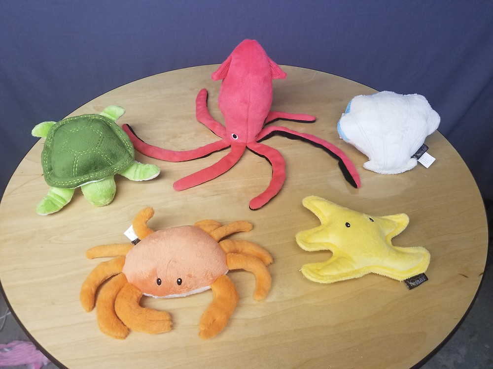 5 soft dog toys that look like sea creatures, squid, crab, starfish, clam, sea turtle.