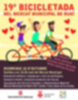 bicicletad 2017.jpg