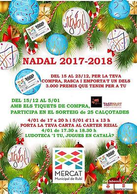 Nadal 2017.jpg