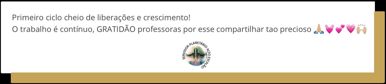 Depoimento Servidor Planetário 20.png
