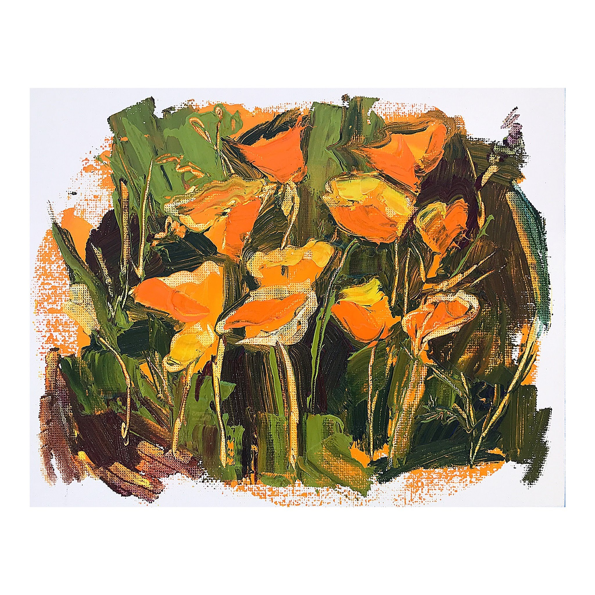 poppies no. 4