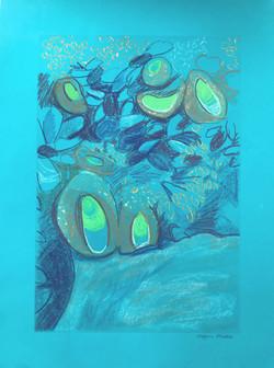 Anemones Becoming