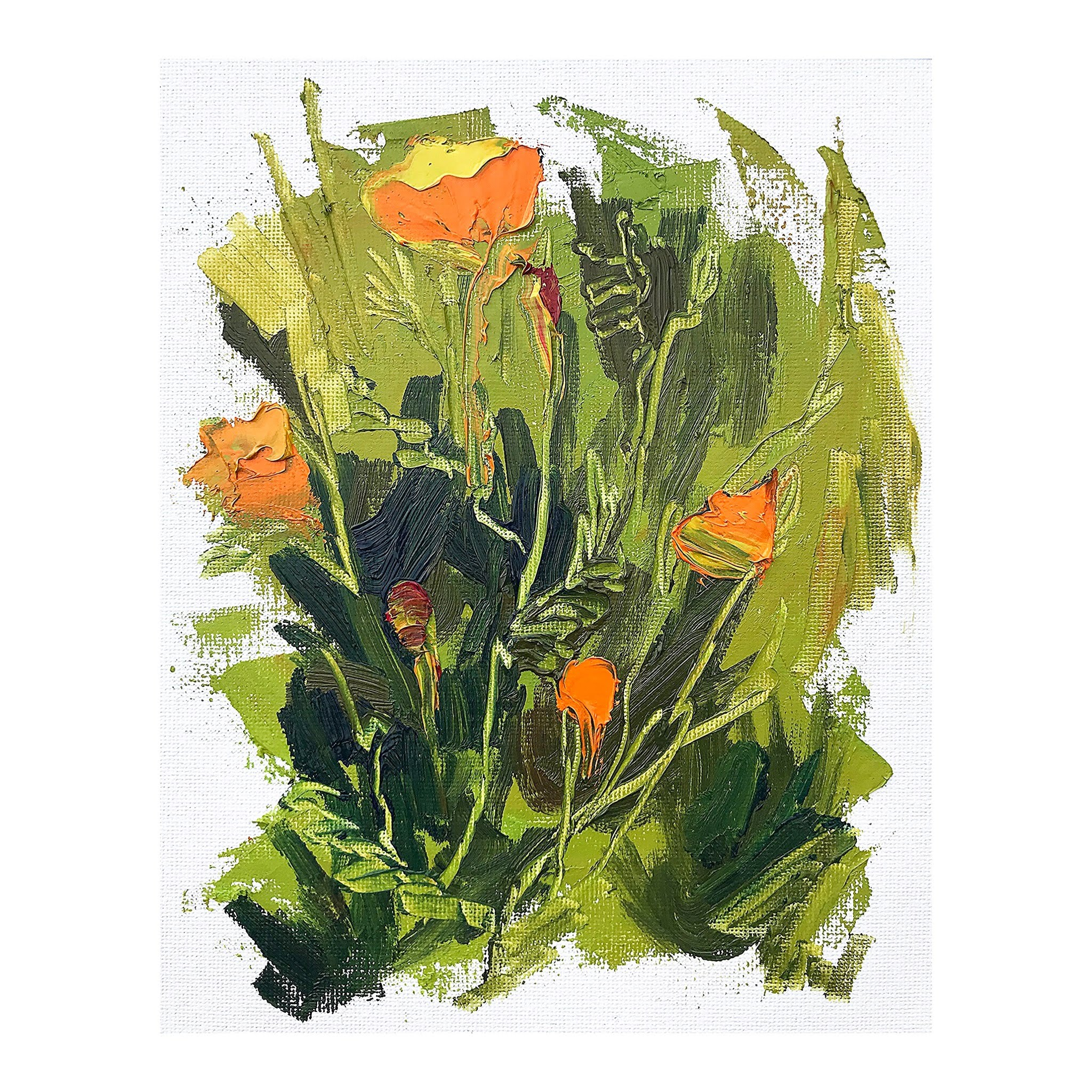 poppies no. 2