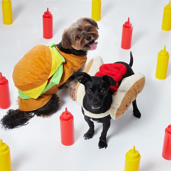 hotdog_hamburger.jpg
