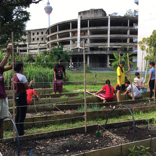 Urban Garden 2.jpeg