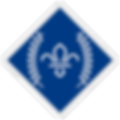 chief-scouts-diamond-award-rgb-png.png