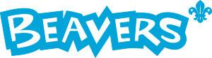 Beaver_CMYK_blue_linear