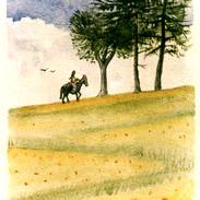 Toscana a cavallo