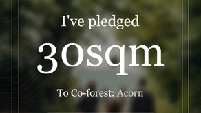 Co-forest commitment