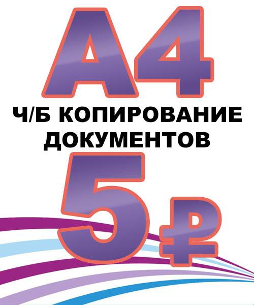 А4 ч/б копия 5р.