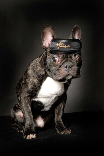 casquette de loubard