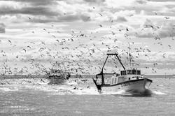Les pêcheurs