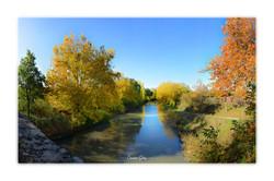 Canal du Midi No.4 - près de Pézens