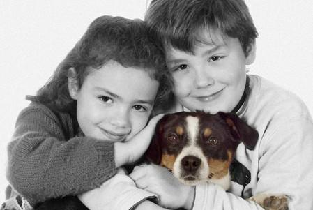 amour de chien