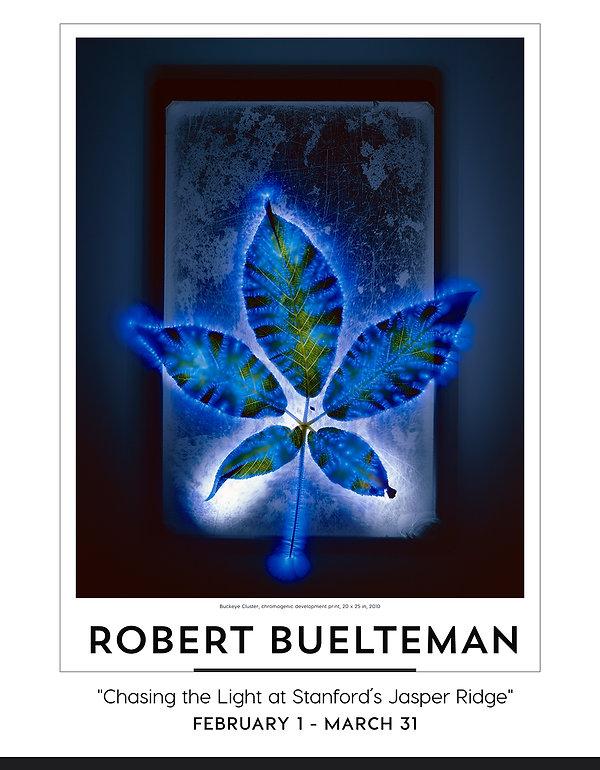 Robert Buelteman_POSTER_web.jpg