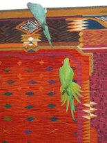 'Buddhi' & 'Sita' auf 'Palacio del Dragon'