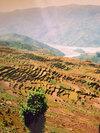 Pokhara, Nepal . 1994