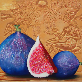 """Figs"""