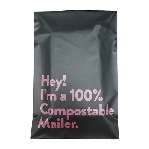 Courier Flyer Bag