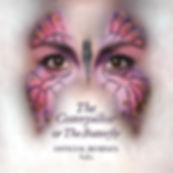 Caterpillar Remixes Vol.1 Artwork.jpg