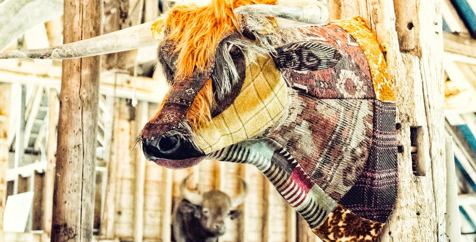 Carola van Dyke bull textile taxidermy.j