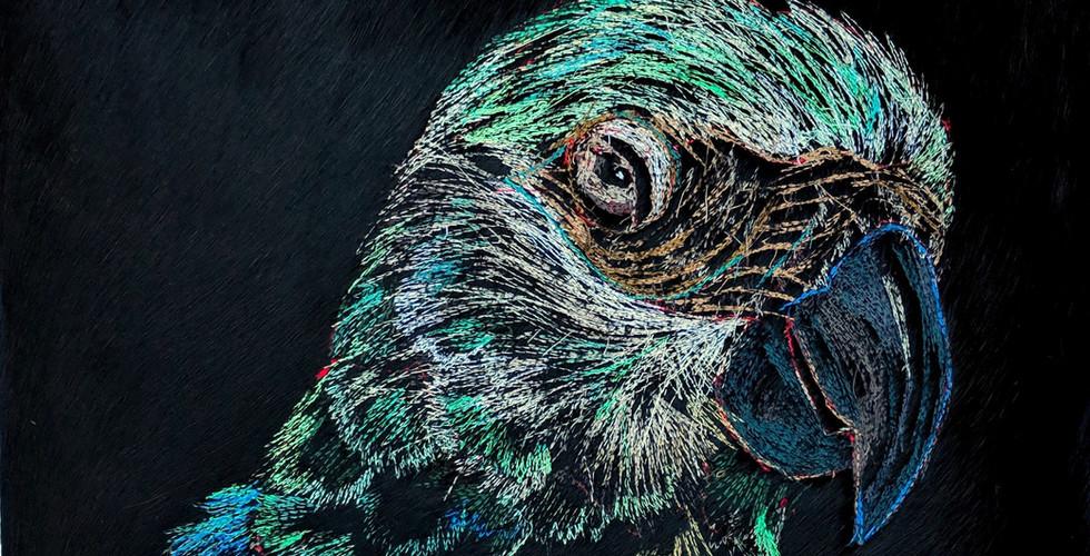 Carola van Dyke parrot embroidery.jpg