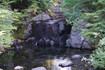 Inside Rainier's Garden