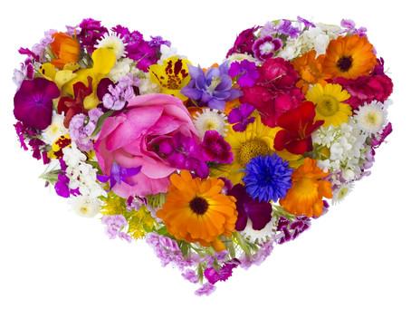 An Invitation for Loving Kindness