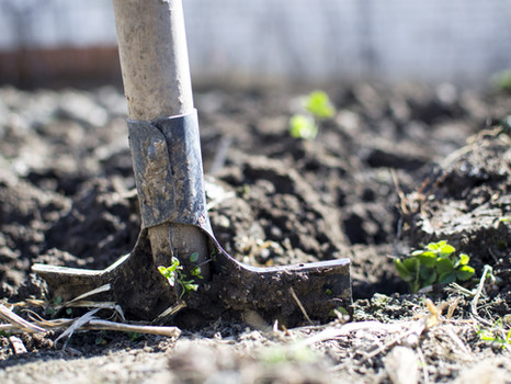 NT Soil Consortium launches on World Soil Day