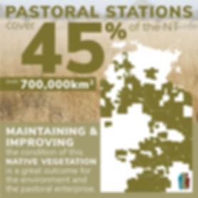 TNRM Pastoral Infographic_Pastoral stati