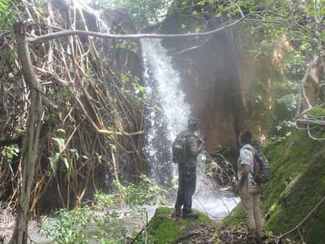 MEDIA RELEASE: Land home to bush medicine and food garden joins voluntary conservation program