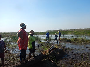 Searching for long-necked turtles at the