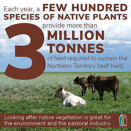 TNRM Pastoral Infographic_Tonnes of feed