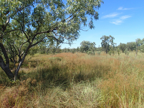 MEDIA RELEASE: 31st TCA means almost 40,000ha of Territory land now under voluntary conservation